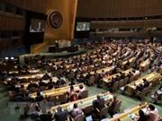 Vietnam trabaja por vínculos más fuertes y efectivos con la ONU