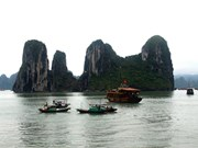 Exposición destaca a Vietnam a través de fotos artísticas