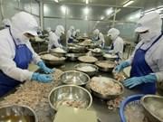Vietnam aumenta exportaciones de productos a la India