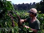 Premier de Vietnam aprueba proyecto a favor de la reducción sostenible de la pobreza