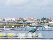 Distrito costero vietnamita de Hai Hau desarrolla economía marítima