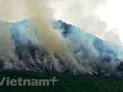 Alemania asiste a Vietnam en respuesta al cambio climático
