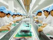 Provincia survietnamita Dong Nai desembolsa mil 200 millones de dólares de inversión extranjera
