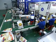 Vietnam busca nuevas orientaciones para impulsar exportaciones de arroz