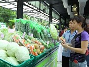 Impulsan ingreso de productos vietnamitas en mercado de ASEAN
