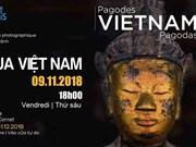 Pagodas de Vietnam en mirada de fotógrafo francés