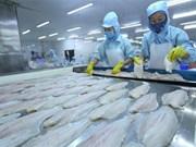 Exportaciones de productos acuícolas de Vietnam crecen 6,2 por ciento