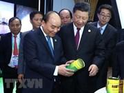 Premier de Vietnam cosecha éxitos al asistir a exposición en China, sostiene vicecanciller