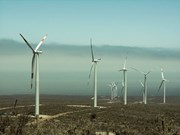 Alemania dispuesta a asistir a Vietnam para optimizar energía eólica