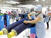 TLC Vietnam-UE: Catalizador para exportaciones de calzado y confecciones textiles