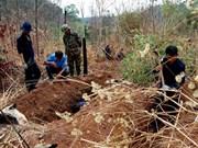 Provincia vietnamita de Thanh Hoa intensifica la búsqueda de restos de mártires