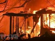 No se reportan víctimas vietnamitas en incendios forestales en California, informa Embajada