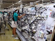 Industria auxiliar de Vietnam se considera sector atractivo para inversionistas extranjeros