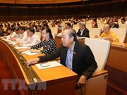Parlamento de Vietnam aprueba Ley de Amnistía (modificada)