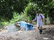 Provincia vietnamita de Phu Yen libre de la gripe aviar tipo H5N6