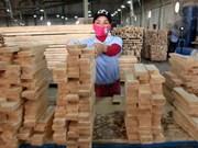 Exportaciones de madera de Vietnam se prevé alcancen ocho mil 850 millones de dólares este año
