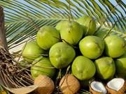 Empresa vietnamita mira a mercados foráneos con nueva planta de procesadora de coco