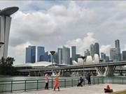 Producción manufacturera de Singapur sube 4,3 por ciento en octubre