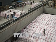 Tailandia gana acuerdos para exportar toneladas de arroz a Filipinas