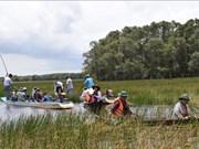 Parque Nacional vietnamita de Tram Chim en su temporada ideal para turistas