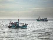 Periodistas europeos estudian esfuerzos de provincia vietnamita para evitar pesca ilegal