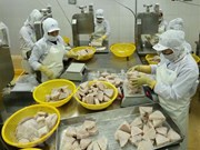 En alza exportación de atún vietnamita a Israel