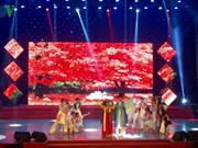 Celebran festival de performances artísticos para extranjeros en ciudad vietnamita