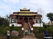 Región china de Guangxi aplica política de reembolso de impuesto para turistas extranjeros