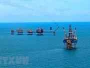 Grupo petrolero vietnamita cumple meta trazada para 2018