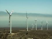 Proponen invertir 12 mil millones de dólares en proyecto de energía eólica en Vietnam