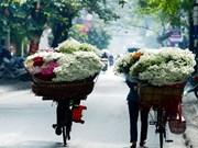 Hanoi: romántica ciudad de las margaritas