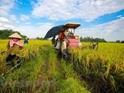 Destacan asistencia internacional a agricultores vietnamitas en respuesta al cambio climático