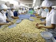 """Procesadores obtienen derecho de etiquetar productos de anacardo """"Binh Phuoc"""""""