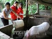 Hanoi cumple meta de reducción de la pobreza con antelación