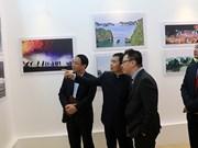 Exponen en Hanoi obras de pintores chinos