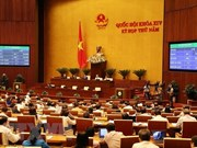 Entran en vigencia importantes leyes en Vietnam a partir de 2019