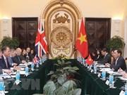 Vietnam y Reino Unido efectúan consulta política a nivel de vicecanciller