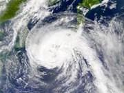 Miles de turistas huyen de las islas tailandesas ante azote del tifón Pabuk