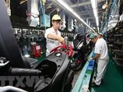 Fitch Solutions destaca crecimiento económico de Vietnam en 2018