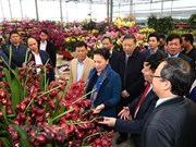 Líder parlamentaria de Vietnam visita aldea de nueva ruralidad en provincia de Hung Yen