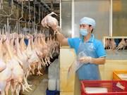 Evalúan en Ciudad Ho Chi Minh campaña sobre la calidad de aves de corral europeas