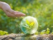 Indonesia planea desarrollar ciudades ecológicas