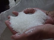 Prevén que demanda de azúcar refinada de Indonesia aumente un cinco por ciento este año