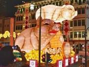 Celebran en Singapur diversas actividades culturales y artísticas por motivo de Año Nuevo Lunar