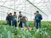 Celebrarán en Hanoi Foro de Promoción Agrícola de Vietnam 2019