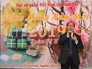 Celebran vietnamitas en África fiestas del Nuevo Año Lunar
