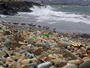 Desechan en Vietnam 150 mil toneladas de cartones cada año