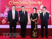 Celebran vietnamitas en el exterior el  Año Nuevo Lunar
