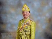 Proclaman al sultán de Pahang como nuevo rey de Malasia