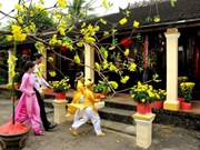 Recrean en Hanoi prácticas tradicionales en saludo a Tet